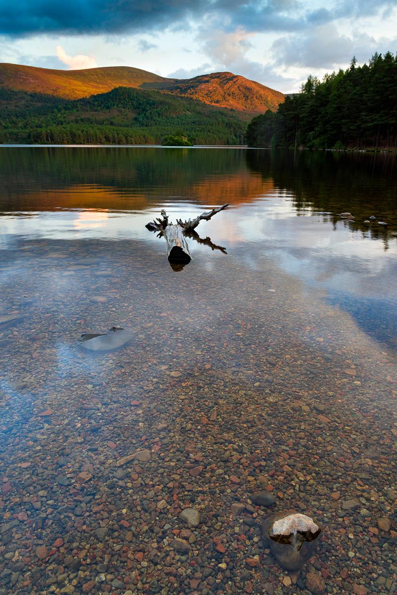 Path to Loch an Eilein, Scotland.