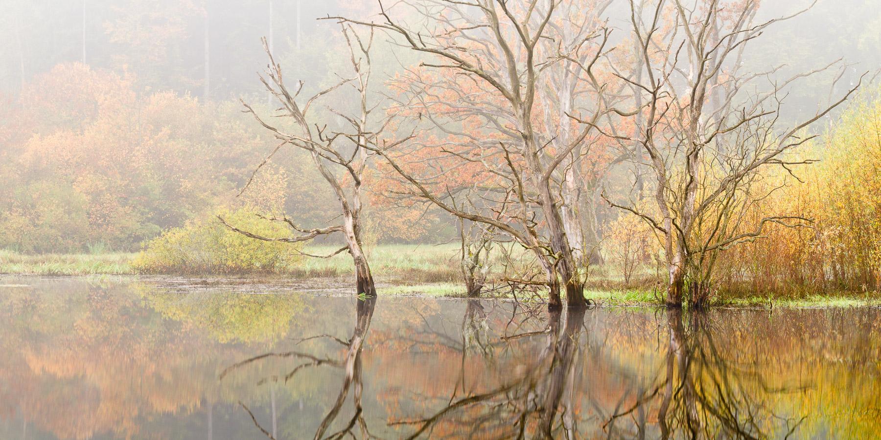 PrK_Autumn_101009_007_008_Pano_crop.jpg