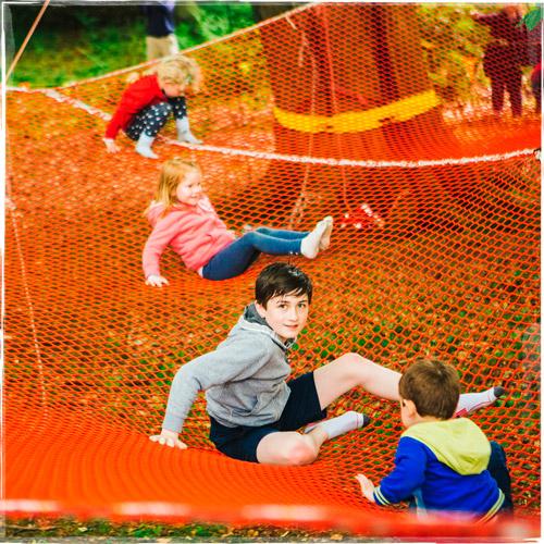 Tree-Nets-2.jpg