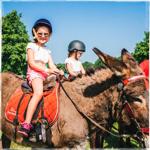 Donkey-Rides-2.jpg