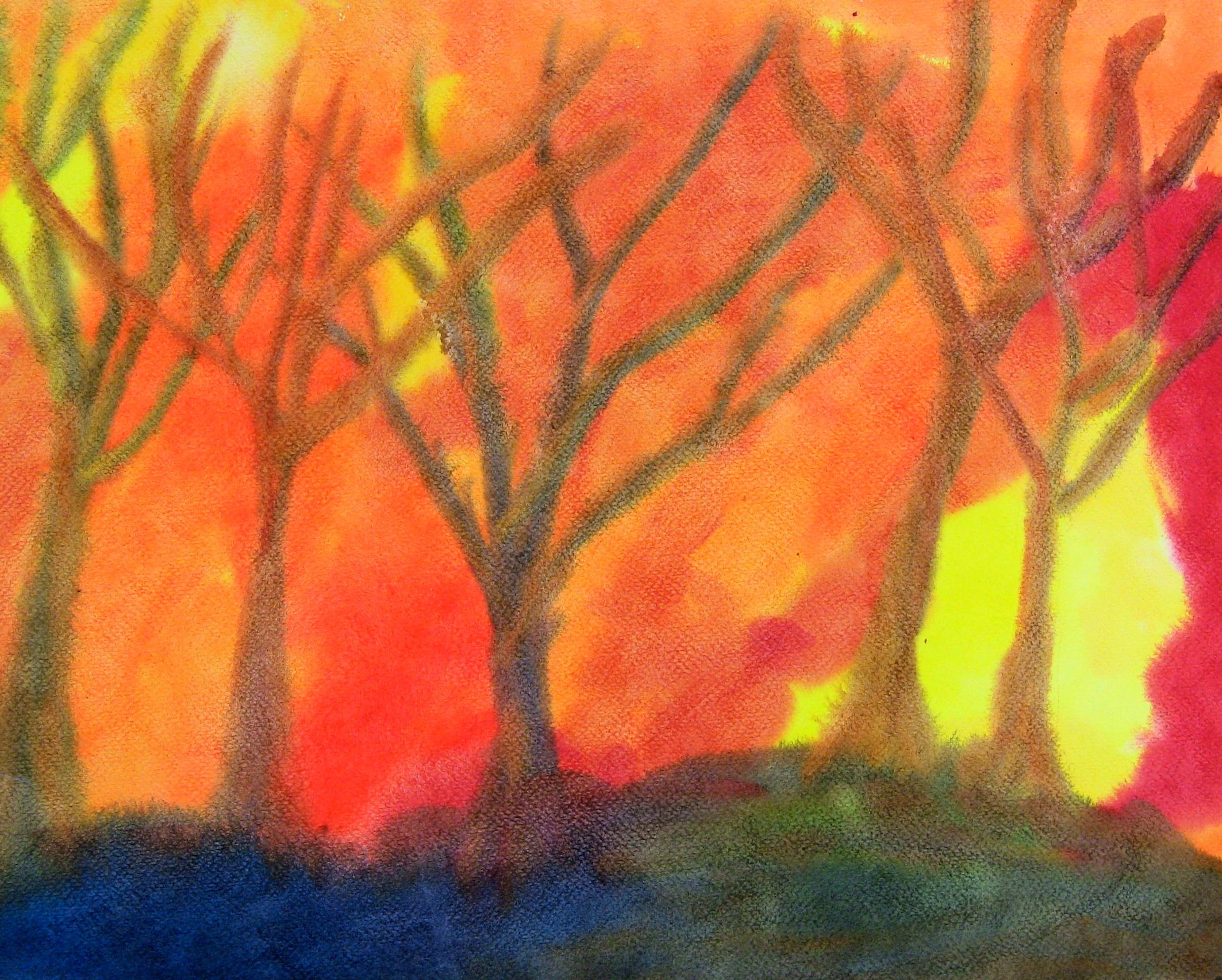 LS 2011-10 Rhys Farrell-Bryan - Green Meadow Waldorf School - NY, USA.jpg
