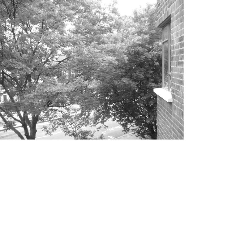 DSCF0101_1.jpg