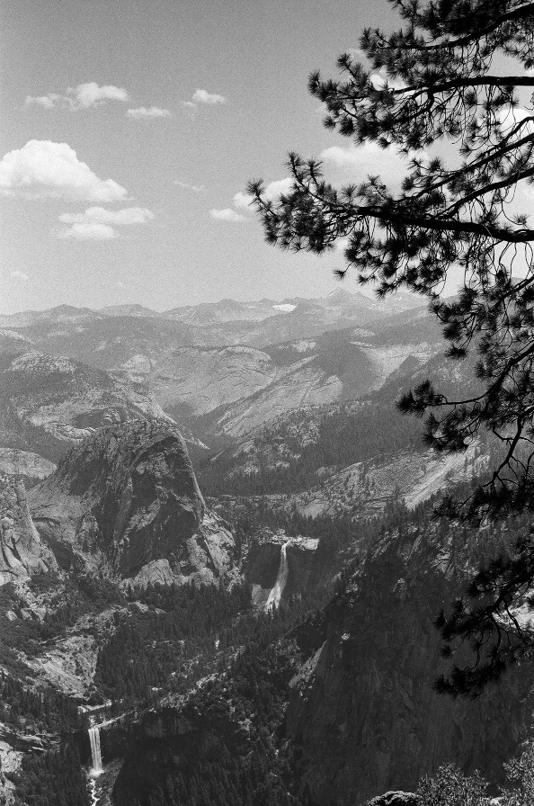 059_YosemiteTall.jpg