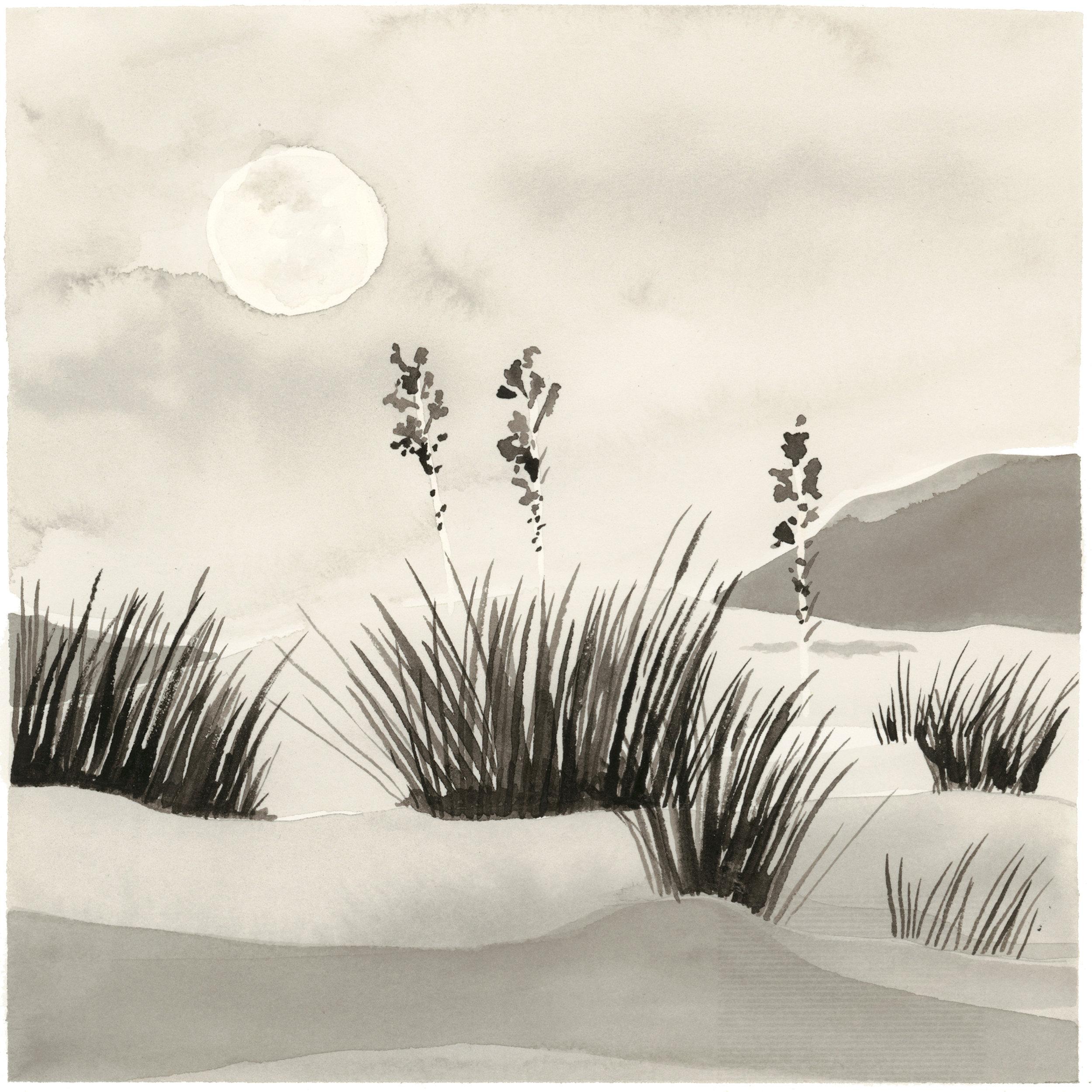 kellycolchin-summer-moon.jpg