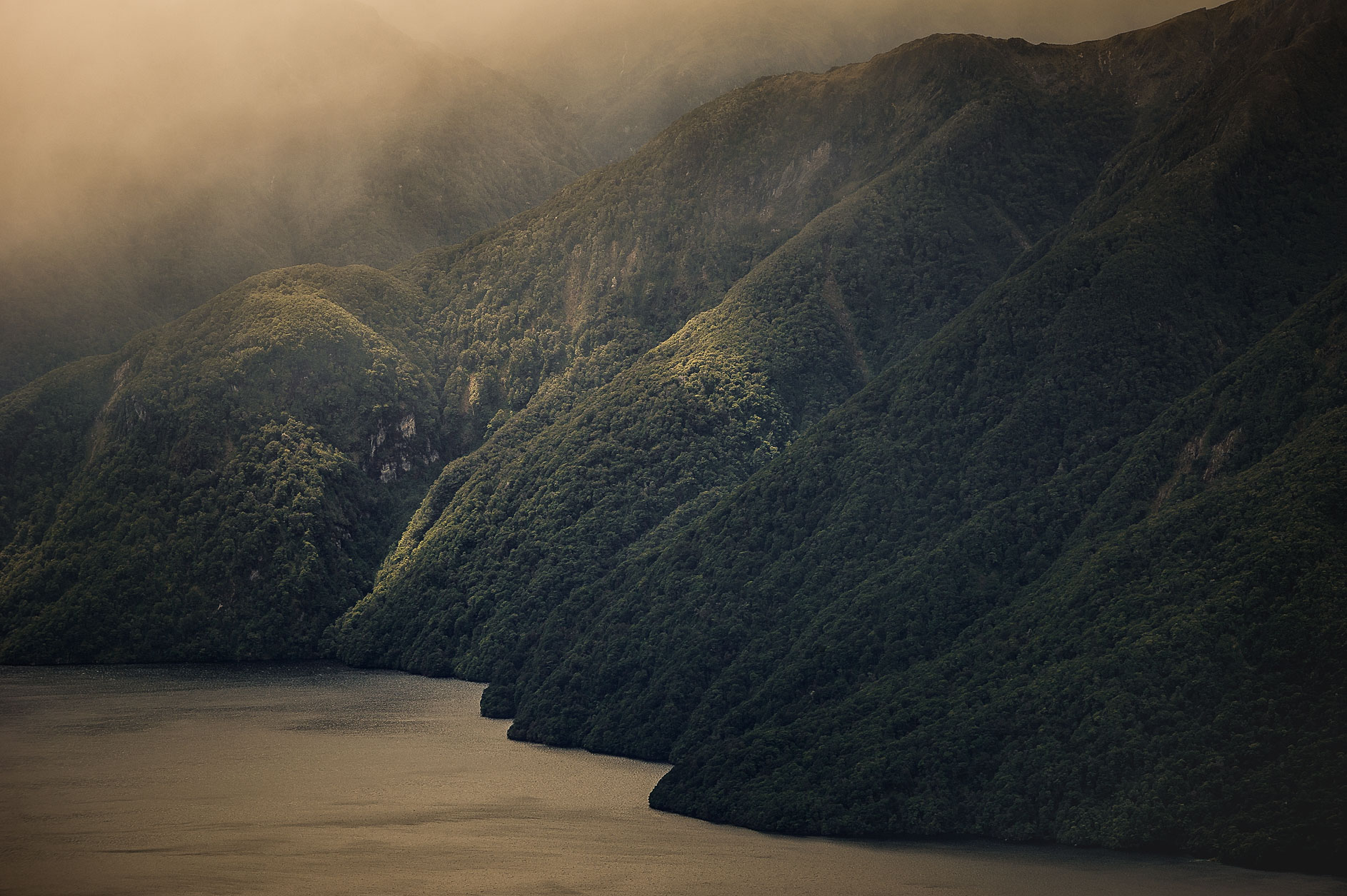 MBP_NZ_19.jpg