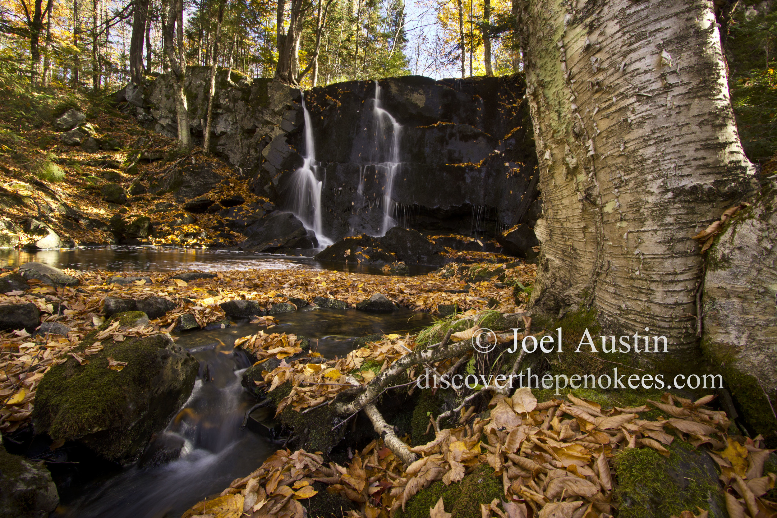 Rouse Falls blanketed by autumn leaves.