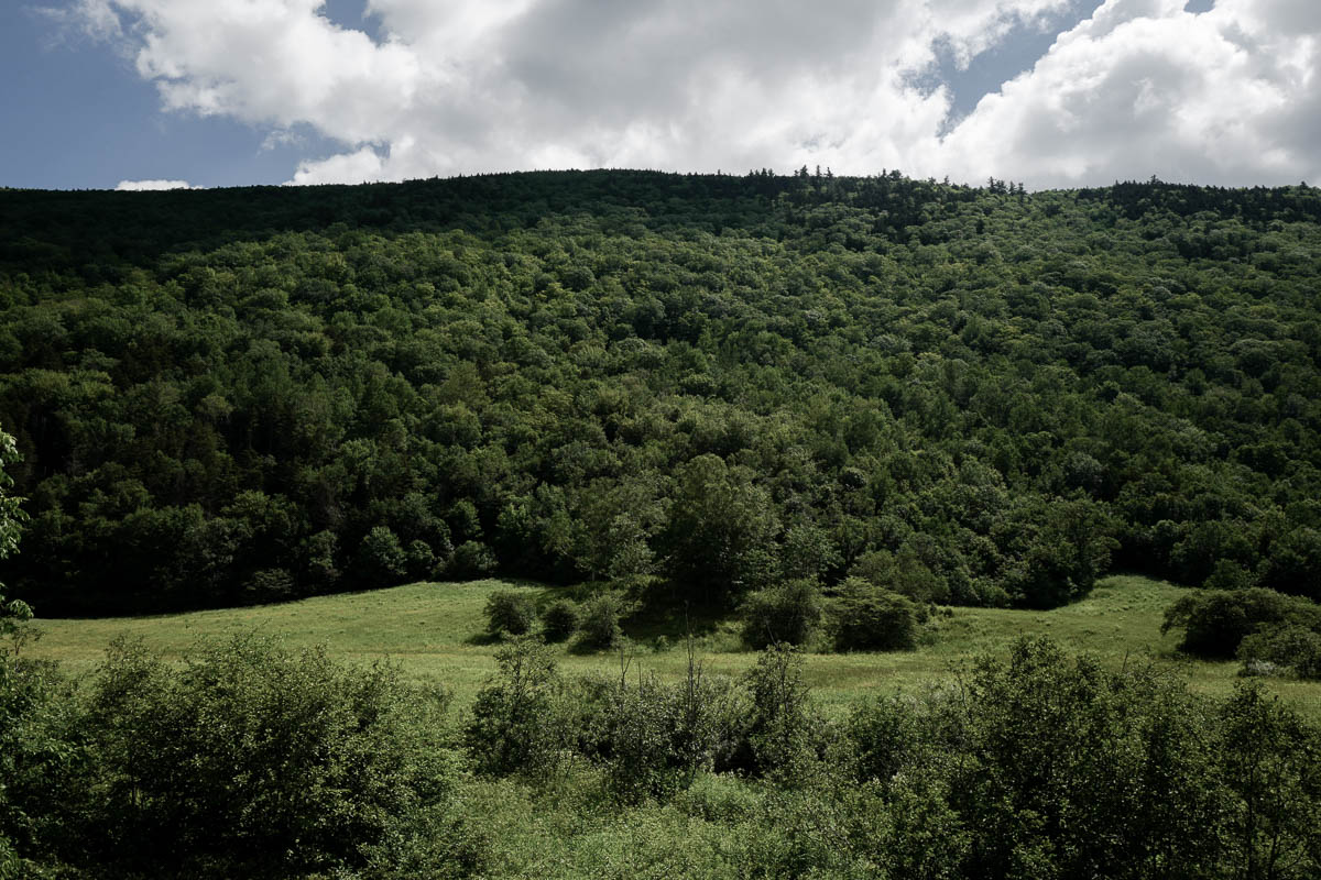 Vermont_062619_-34.jpg