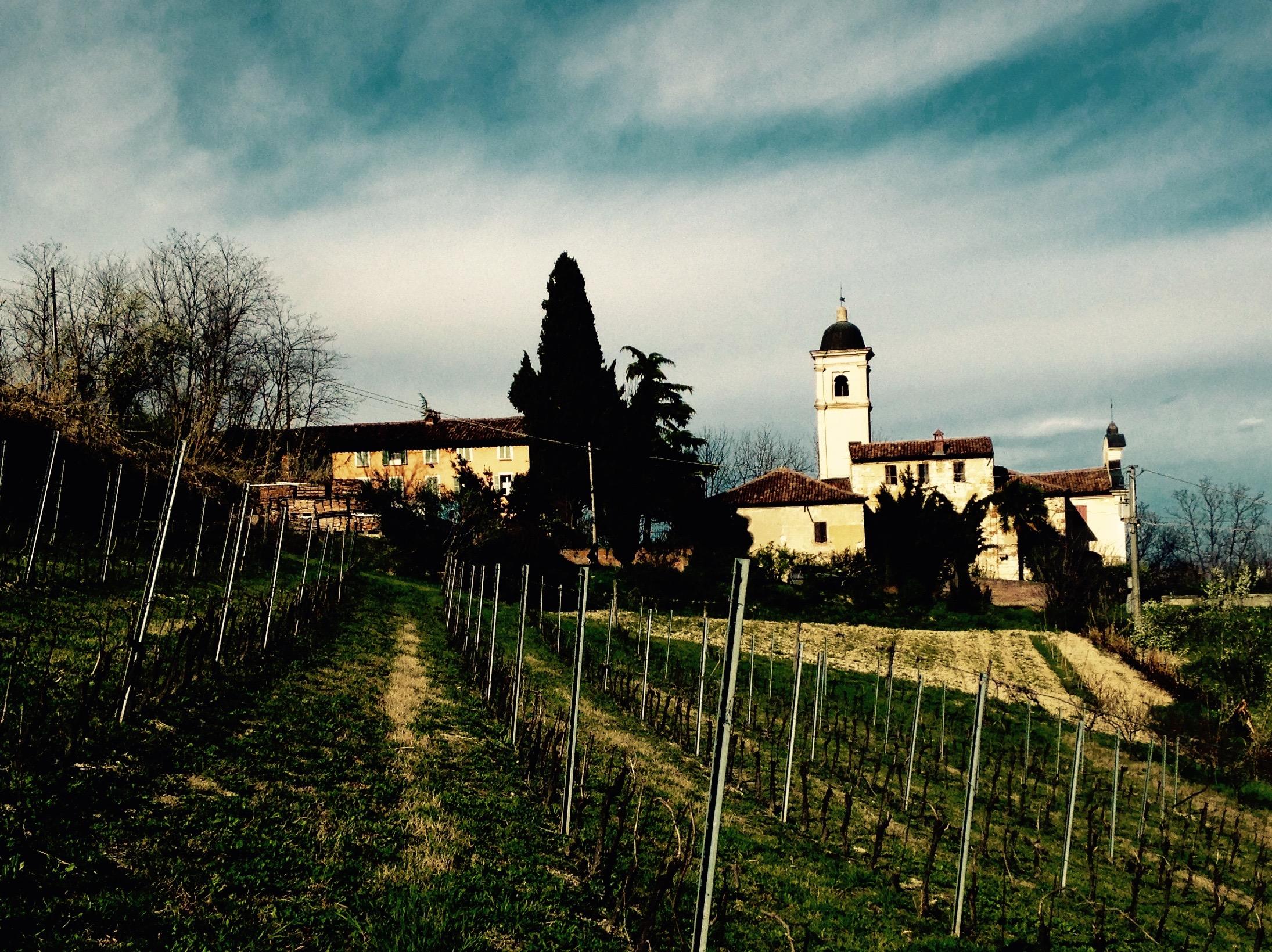 Vicara Winery