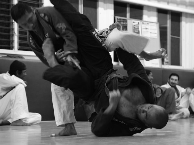 Gracie Jiu-JItsu / Brazilian Jiu-Jitsu