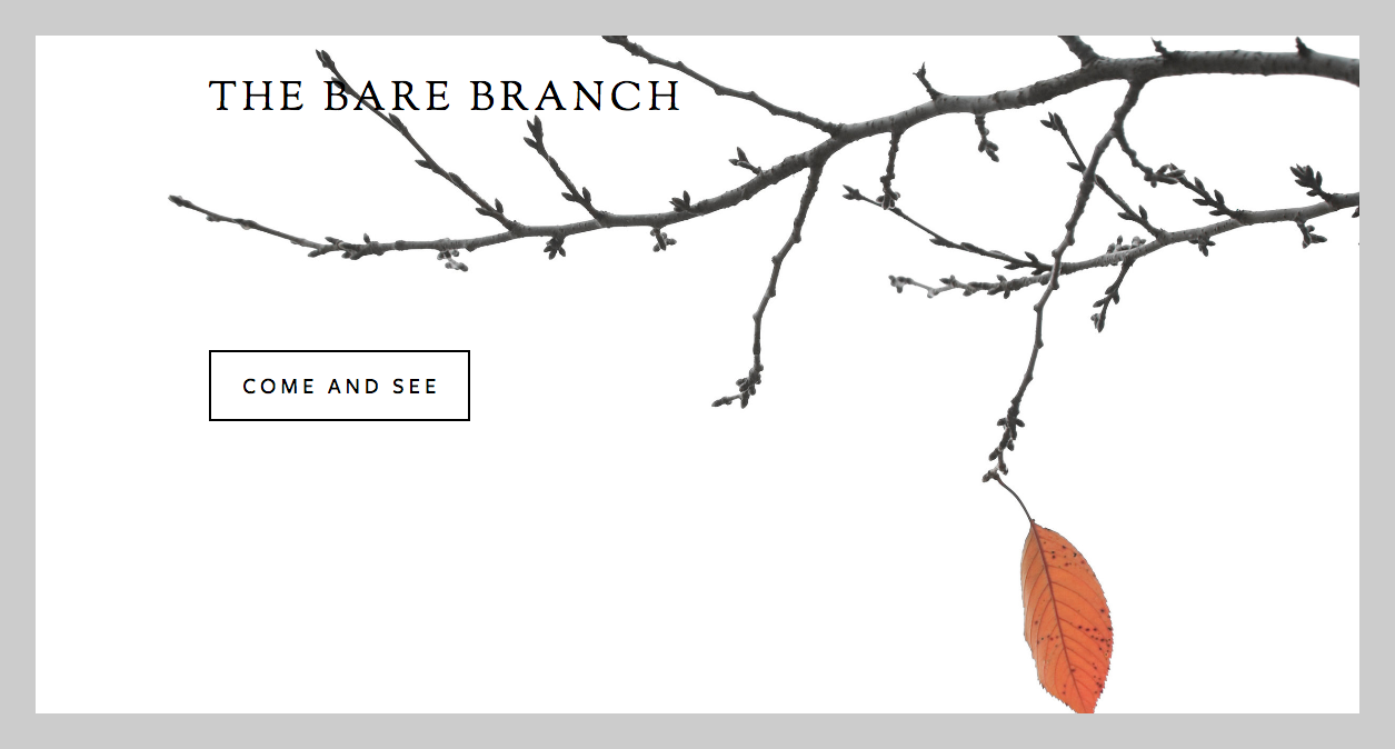 The Bare Branch, Jacksonville, FL