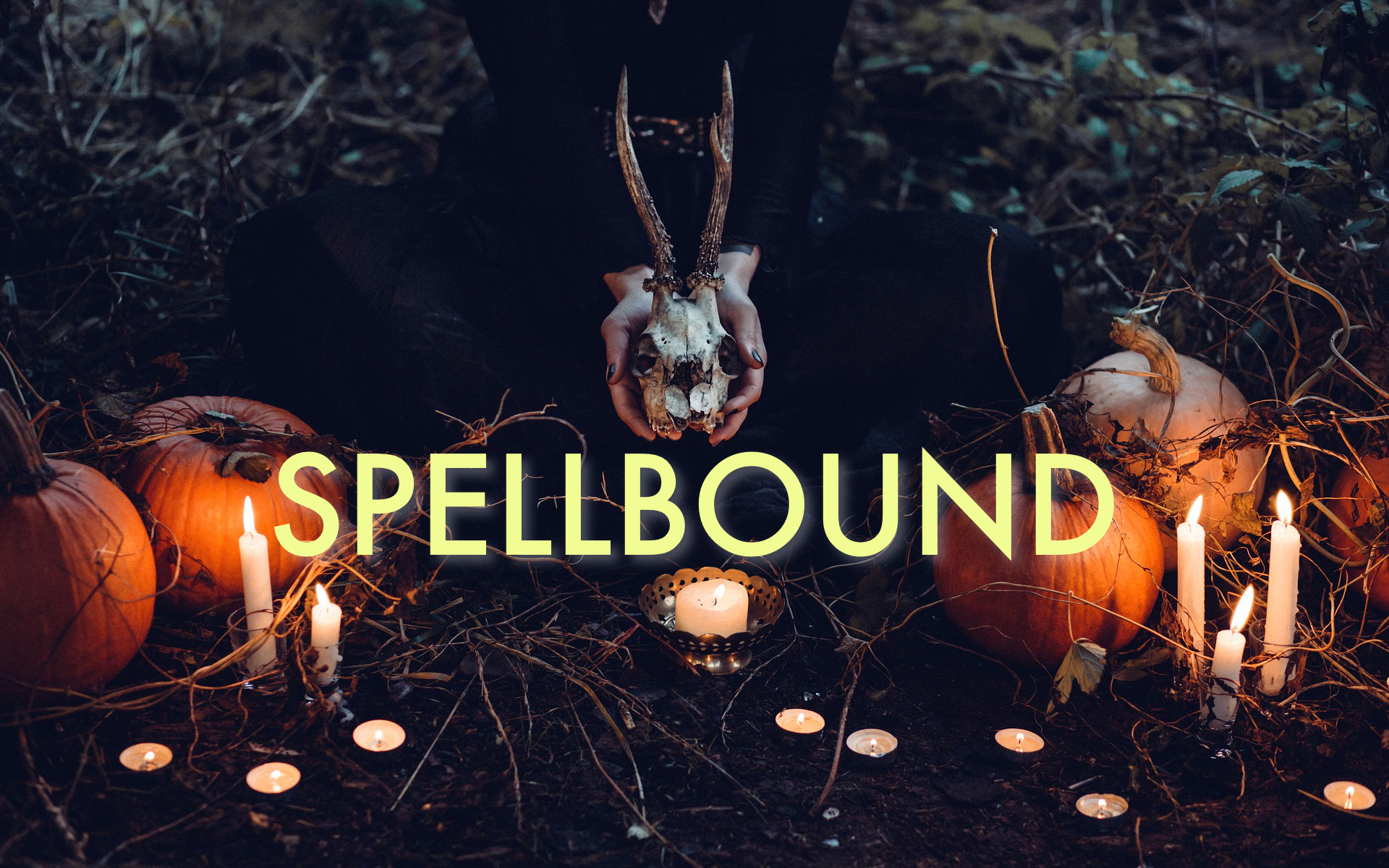 Spellbound  (NEW FOR 2020!)