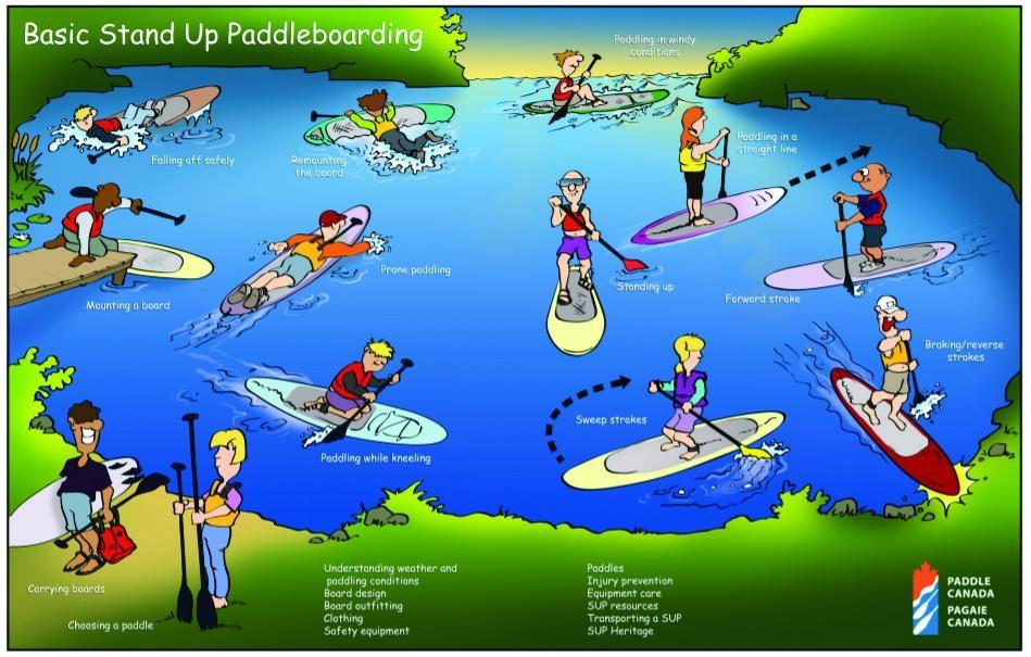 Paul Mason illustration of Basic SUP Skills