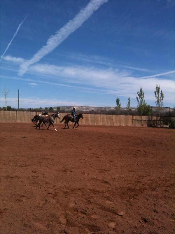 At our facility in Camp Verde