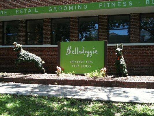 Retail Belladoggie.jpg
