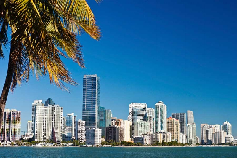 Miami Florida Skyline.jpg
