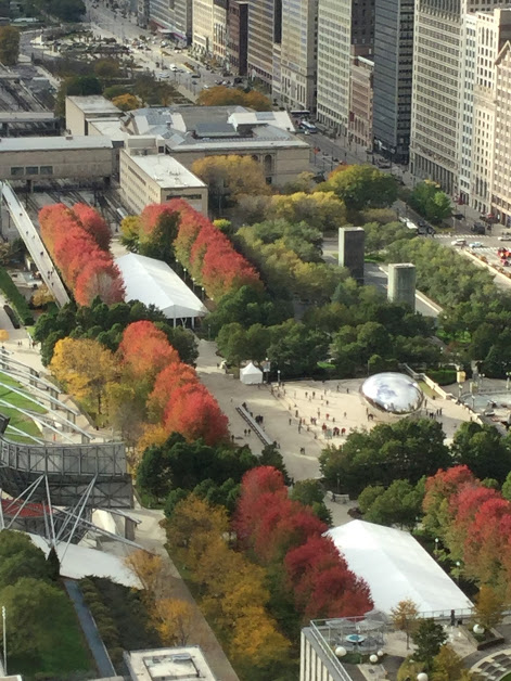Changing leaves in this changing city … join SheCago Tours Oct 7-13