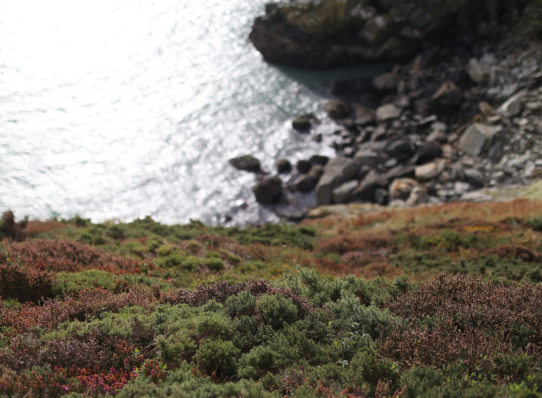ireland-howth-ocean-view.jpg