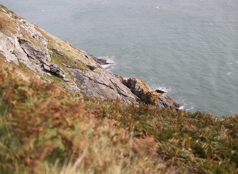 ireland-coast-ocean-howth.jpg