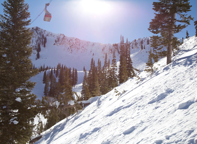 snowbird-cirque-picture-with-tram.jpg