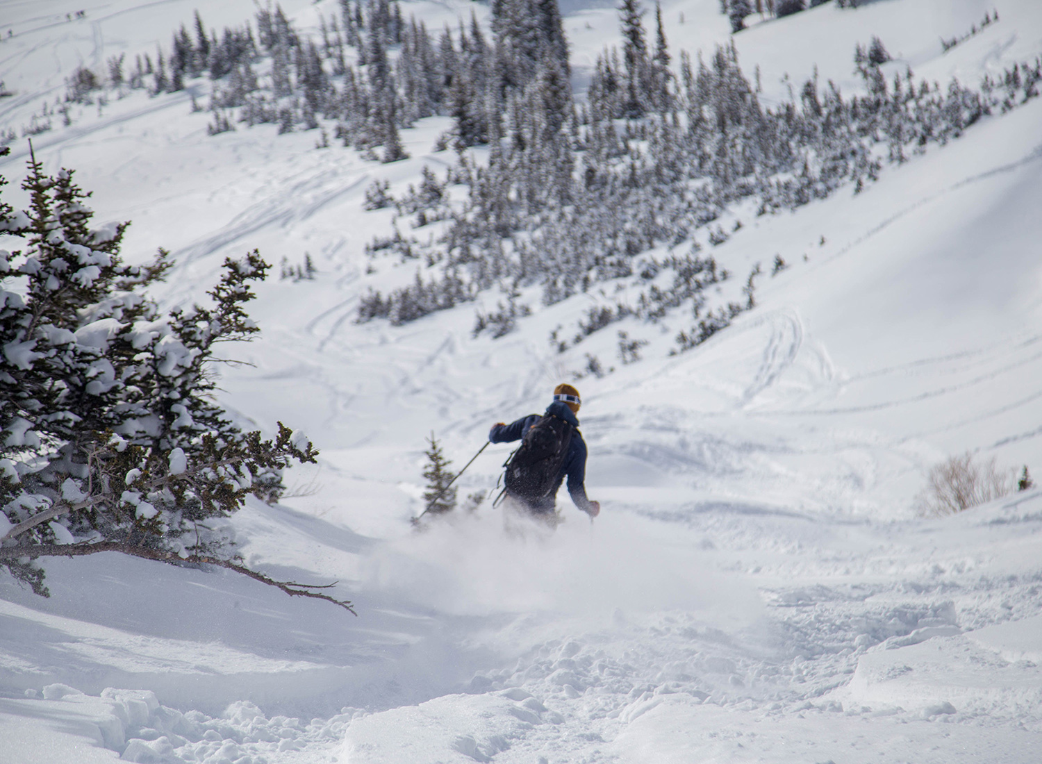 backcountry-skiing-toledo-bowl-exit-pictures.jpg