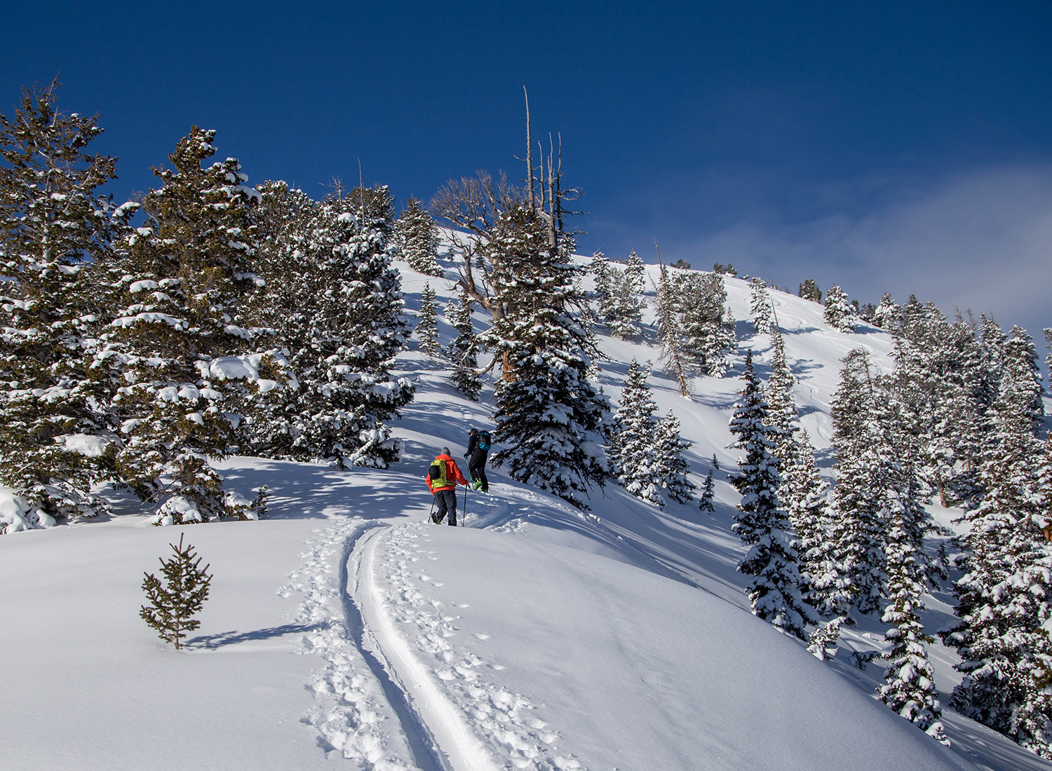 utah-days-draw-backcountry-skiing-tour-pictures.jpg