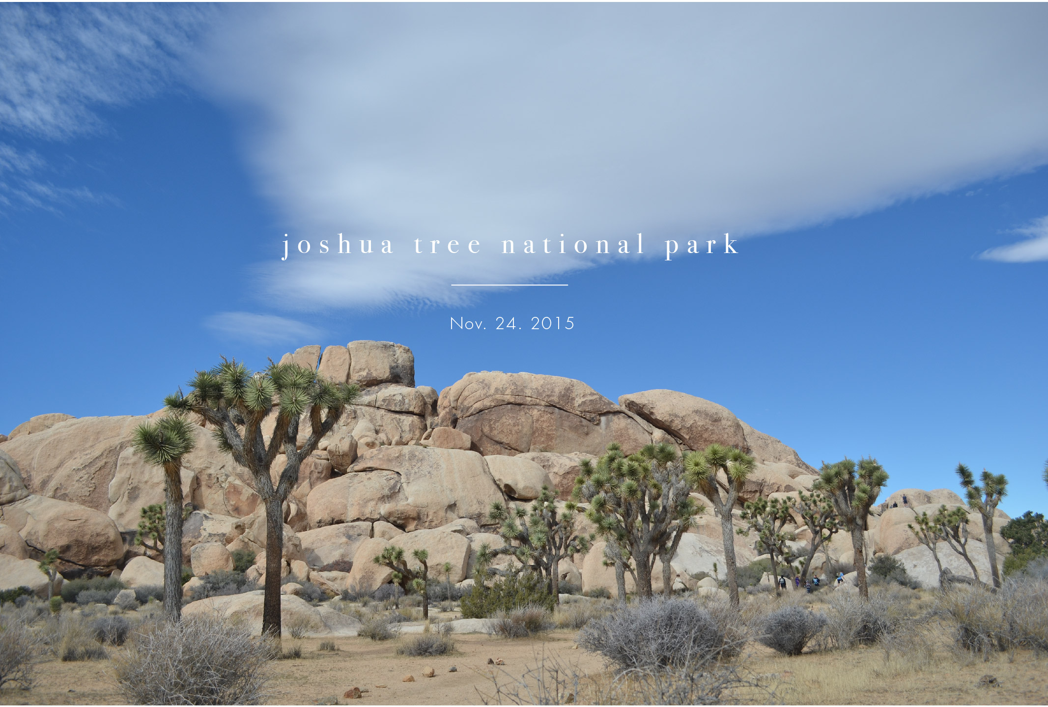 Have heard a lot of good things about Joshua tree national park but didn't have a chance to go.  One day I woke up and decided to drive there from Pasadena by myself. It was beautiful and a little bit chilly in winter.