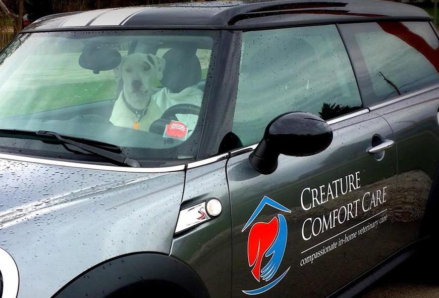 Al taking a ride in the Creature Comfort mobile!