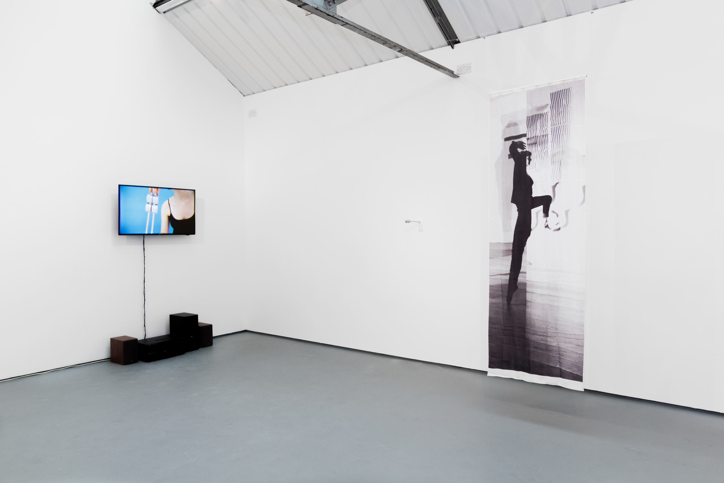 4-And-as-a-veil-rather-than-solid-Rowena-Harris-2015-6.jpg