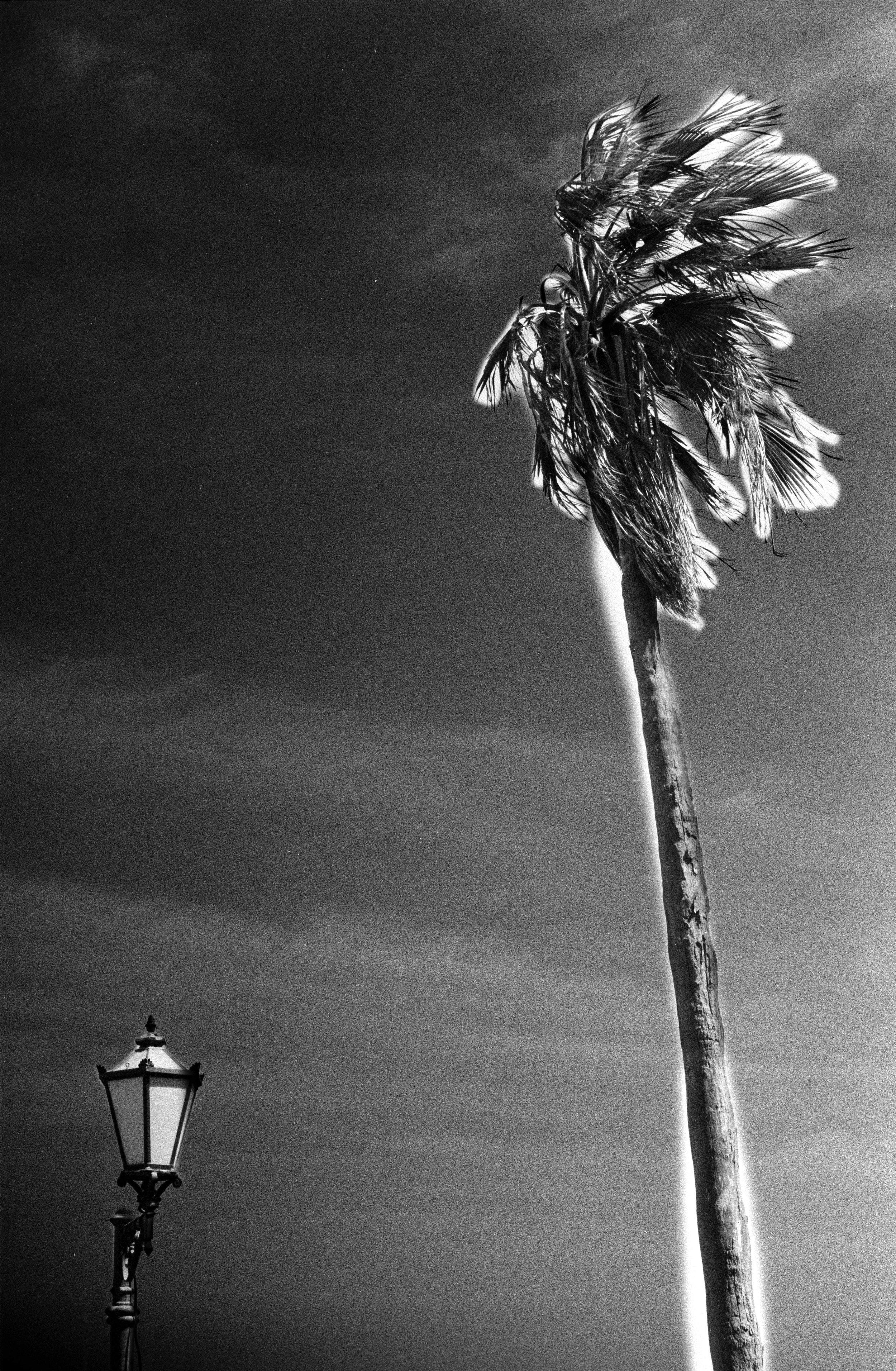 Erections - Sometimes we need shadow, sometimes light.