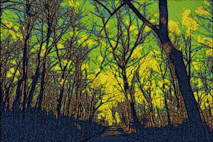 woodspostcard.jpg
