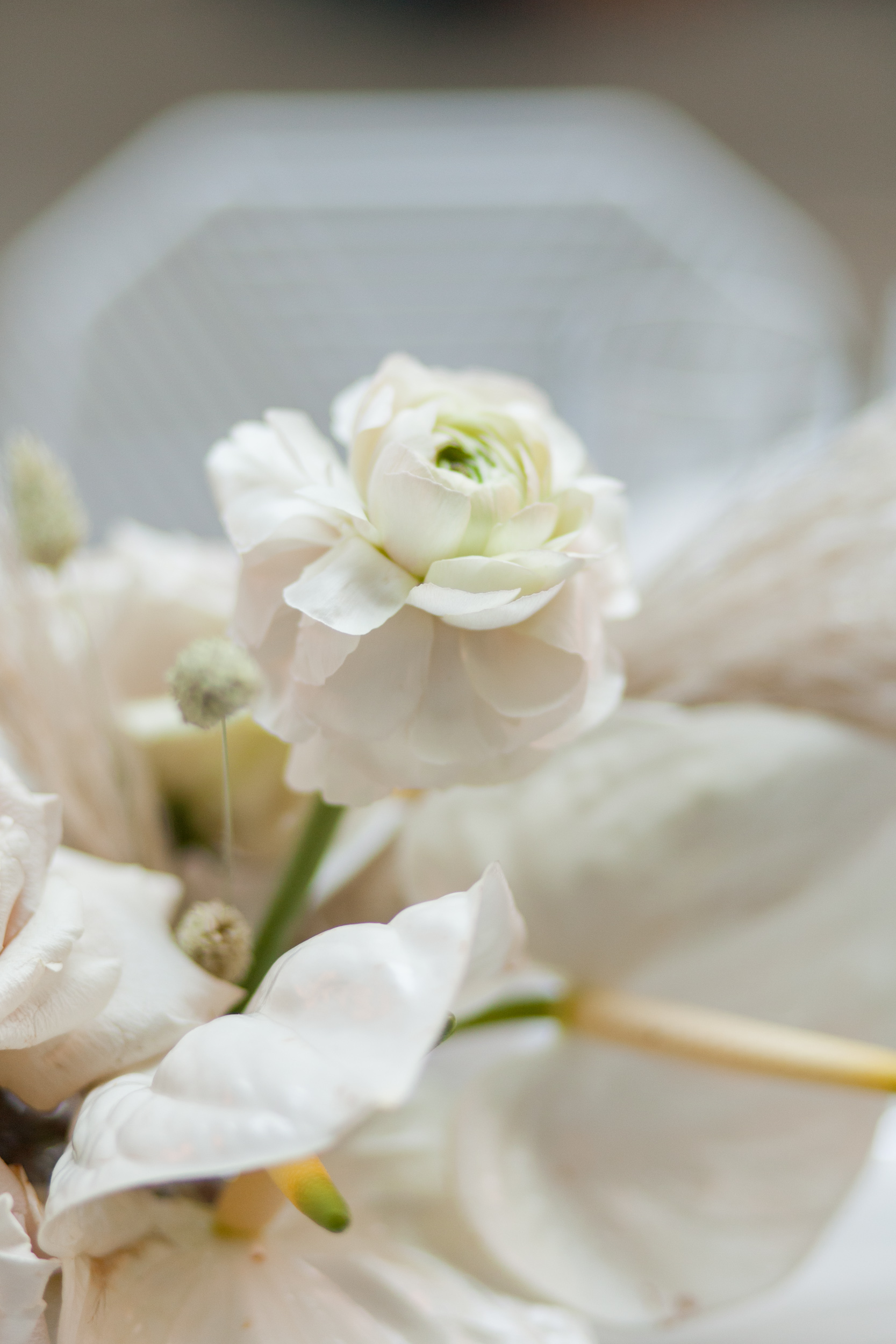 White Boheme Weddings-0029.jpg