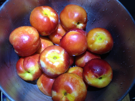 Some nice nectarine was the option when I couldn't find any peaches!
