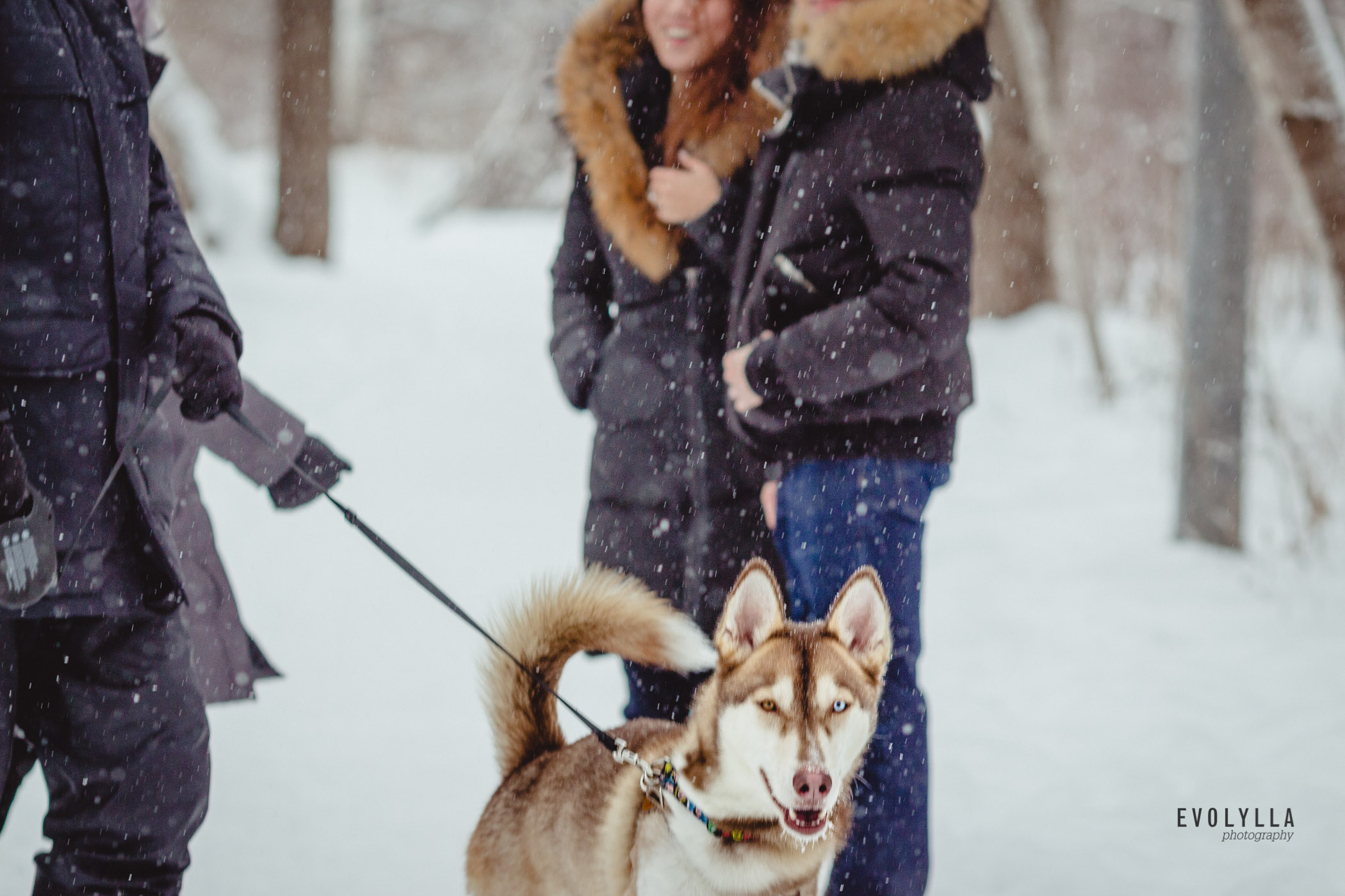 engagement photos in snow