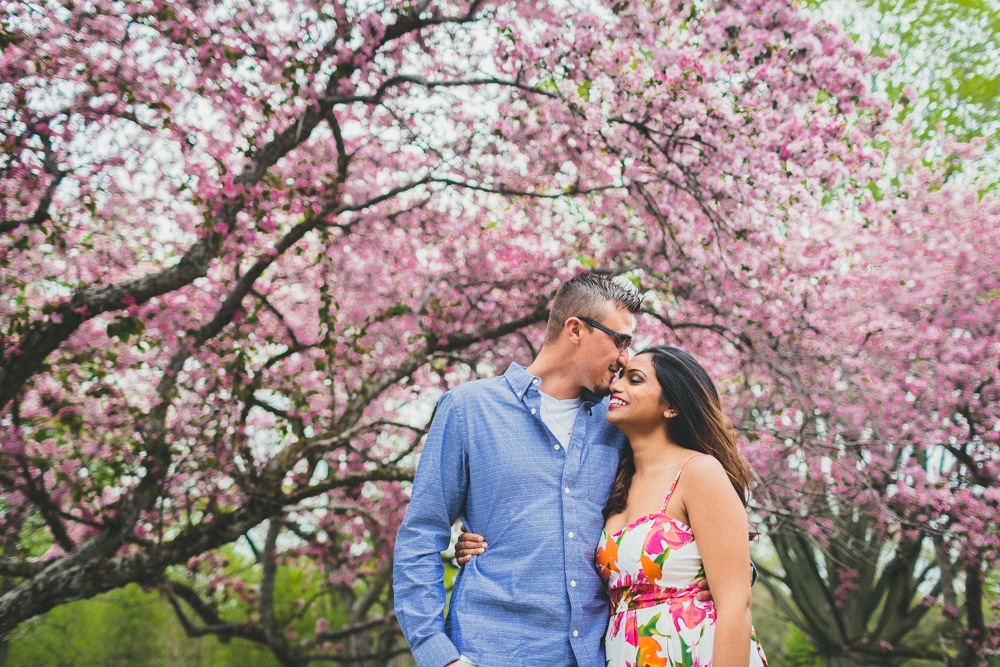 High Park Cherry Blossoms Engagement Photos