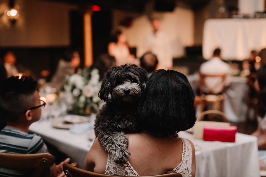 unique wedding photography at the great hall by toronto wedding photographer evolylla photography 0073.jpg