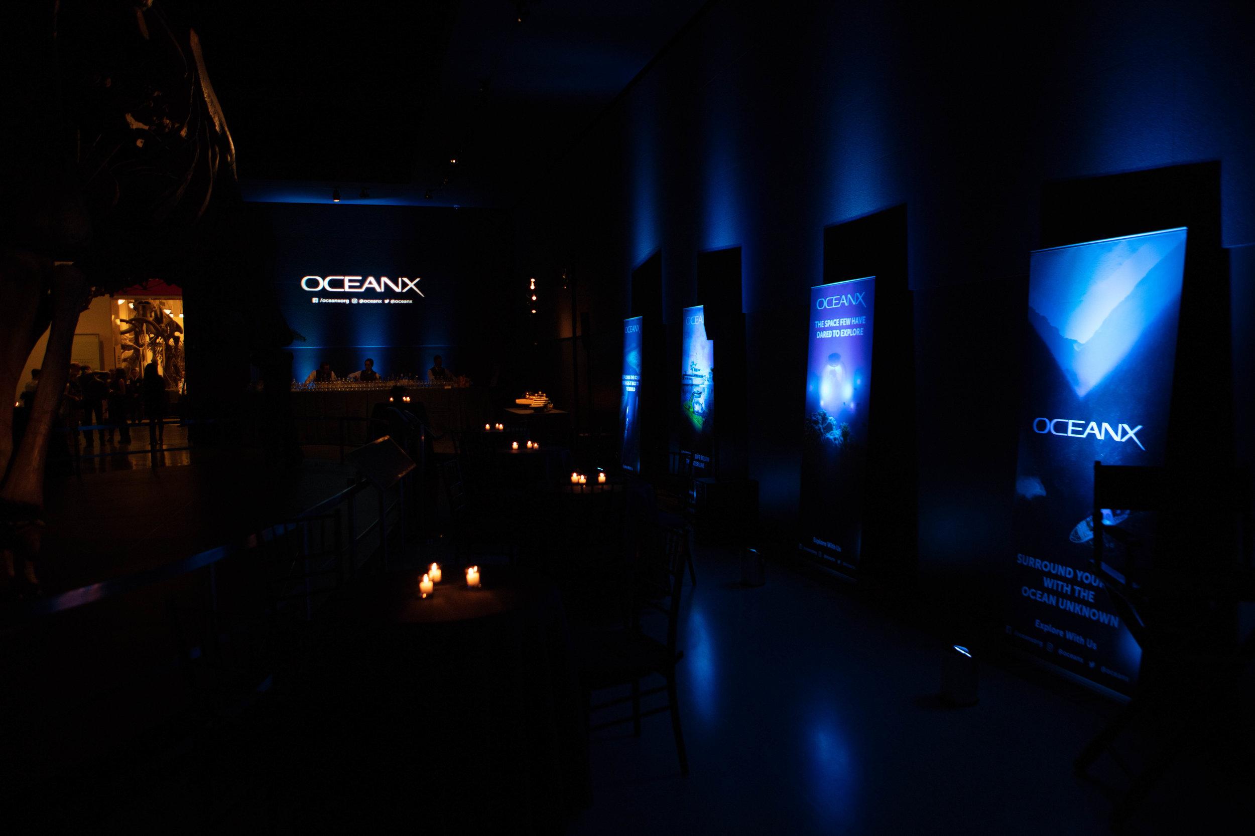 OceanX-2.jpg