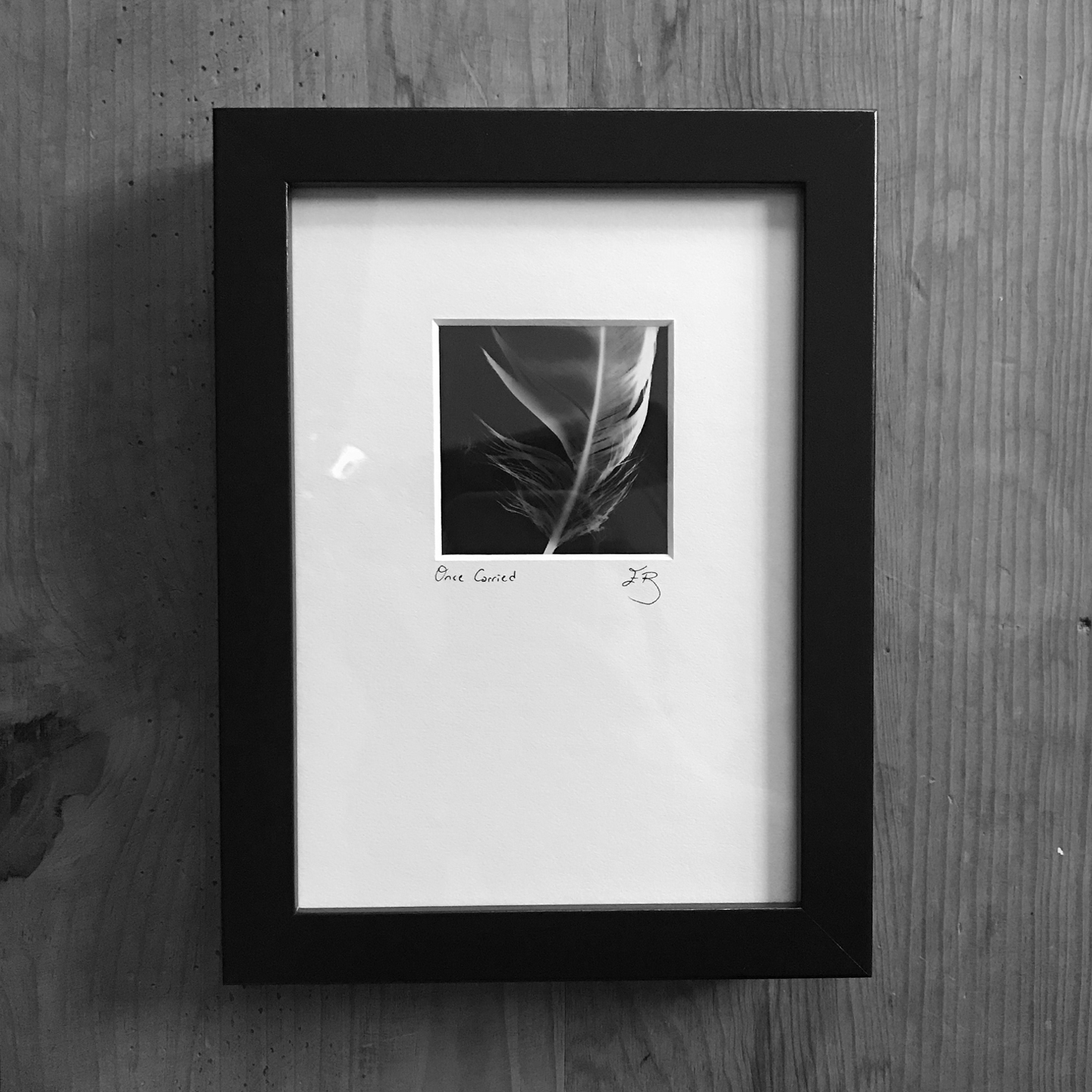Frame Sample: Feather, MN Series (Above)