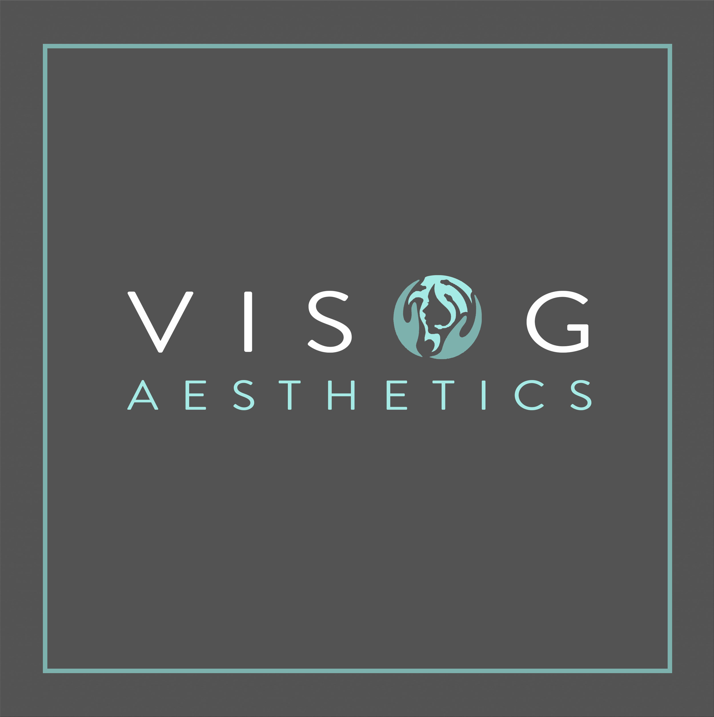 Visog Logo_on grey_square.jpg