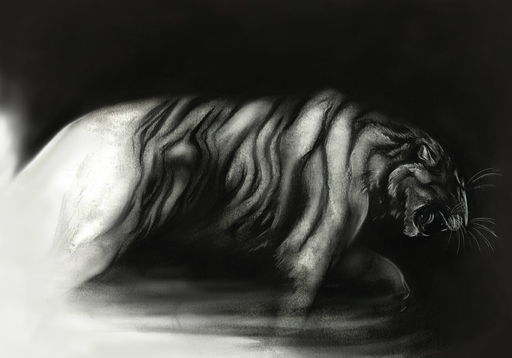 Losing the Tigers