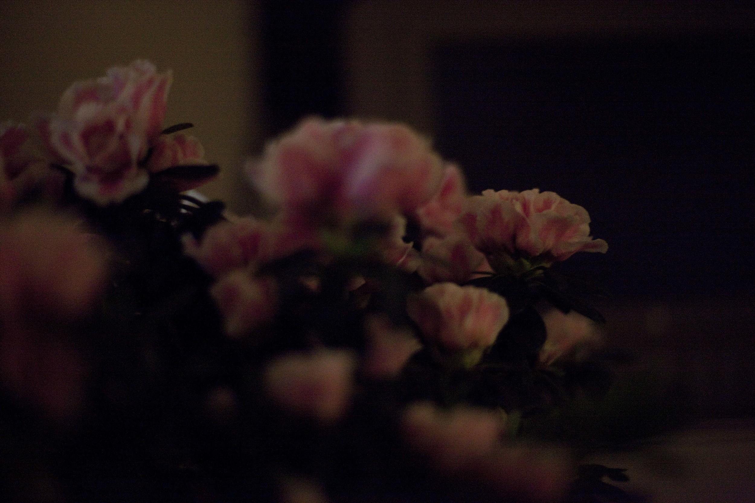 love2011100EOS5D260.jpg