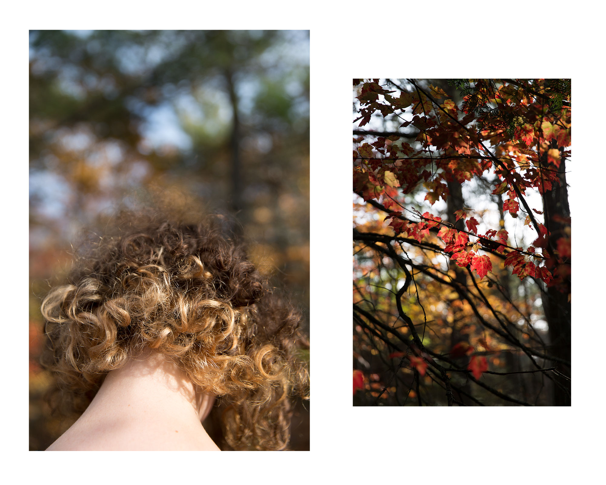 anna_autumn.jpg