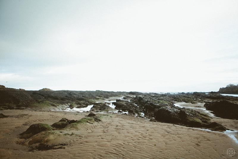 St.-Andrews010.jpg
