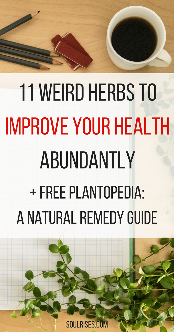 11 weird herbs to improve your health abundantly.png