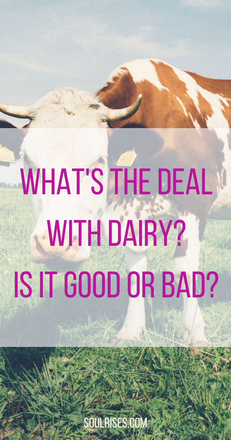 What's the deal with Dairy_ Is it good or bad_.png