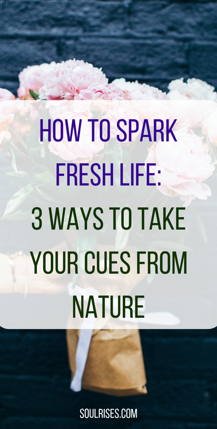 how to spark fresh life_ 3 ways to take your cues from nature.png
