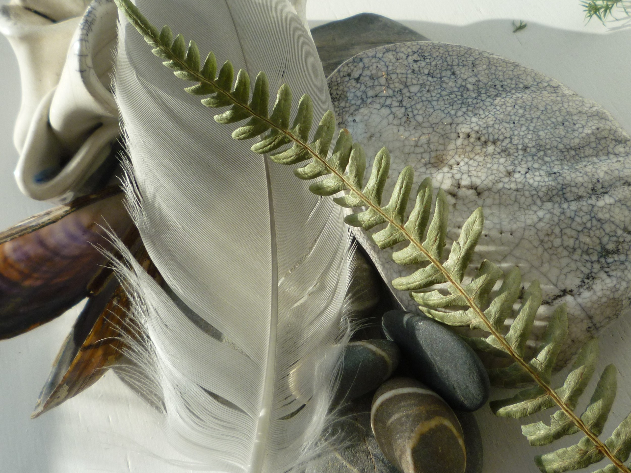 feather, leaf, pebbles and shell.jpg