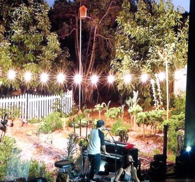 Jason's backyard garden