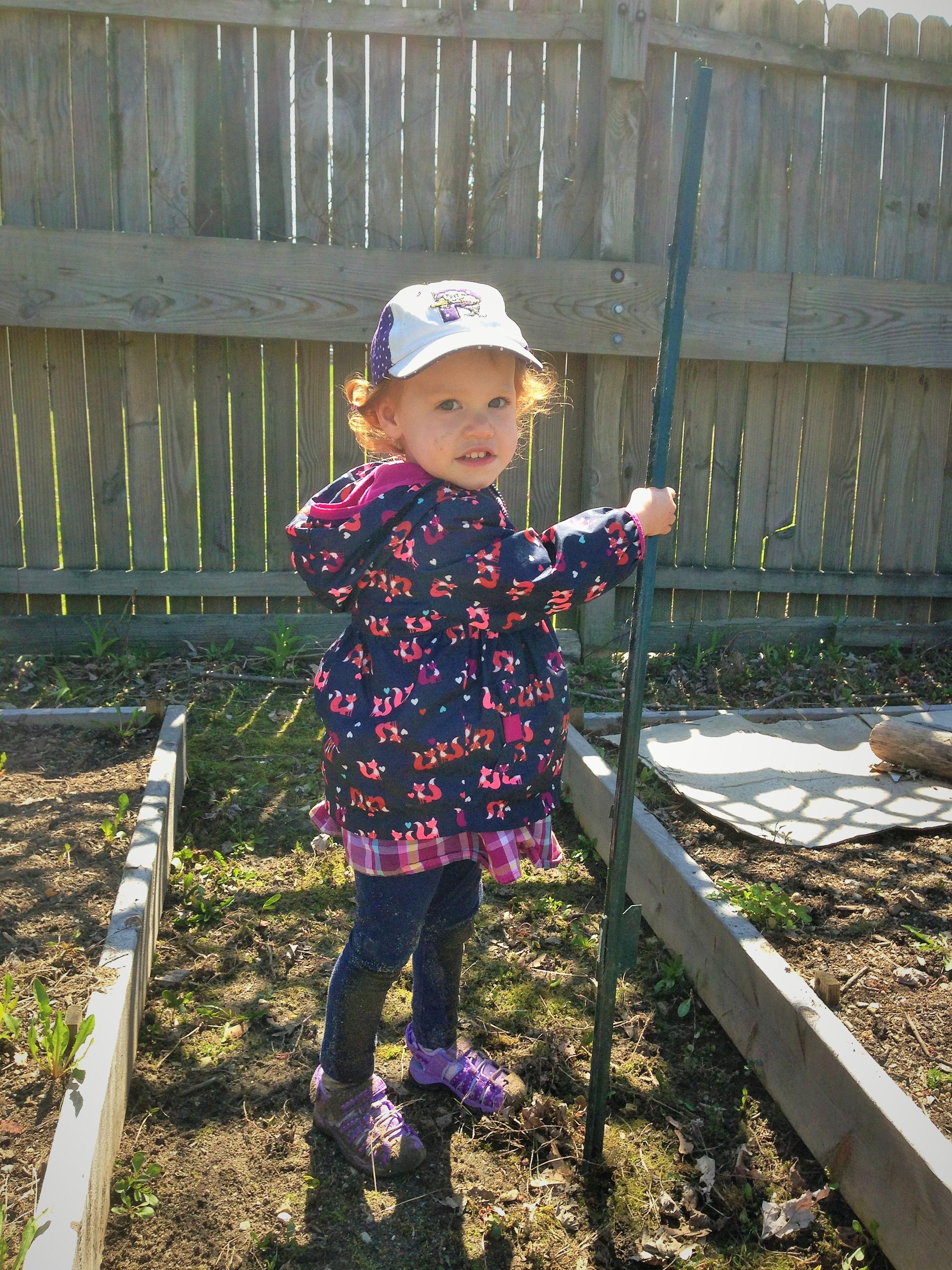 Fencing the Garden