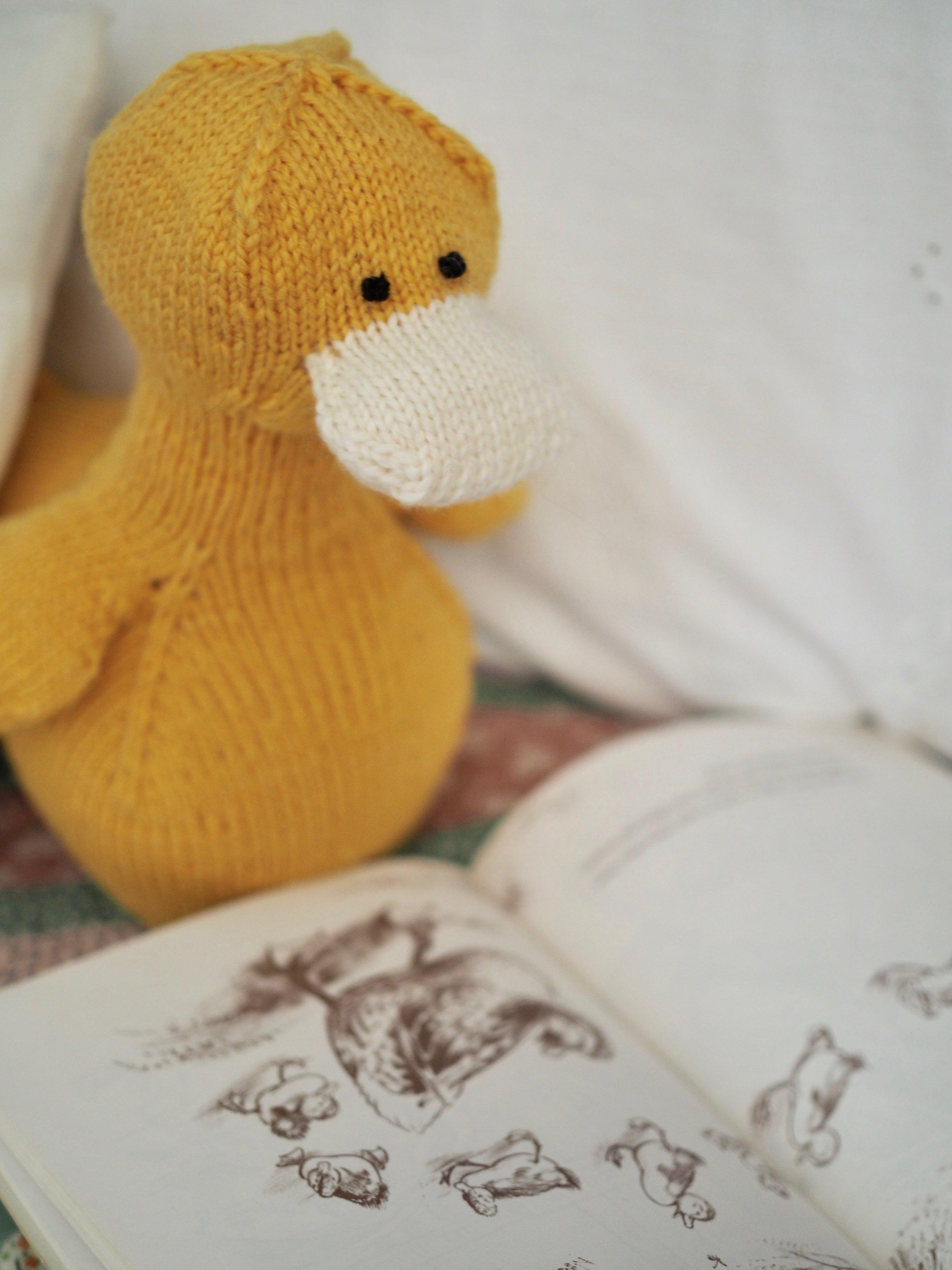 Domenic Duck by Leah B. Thibault
