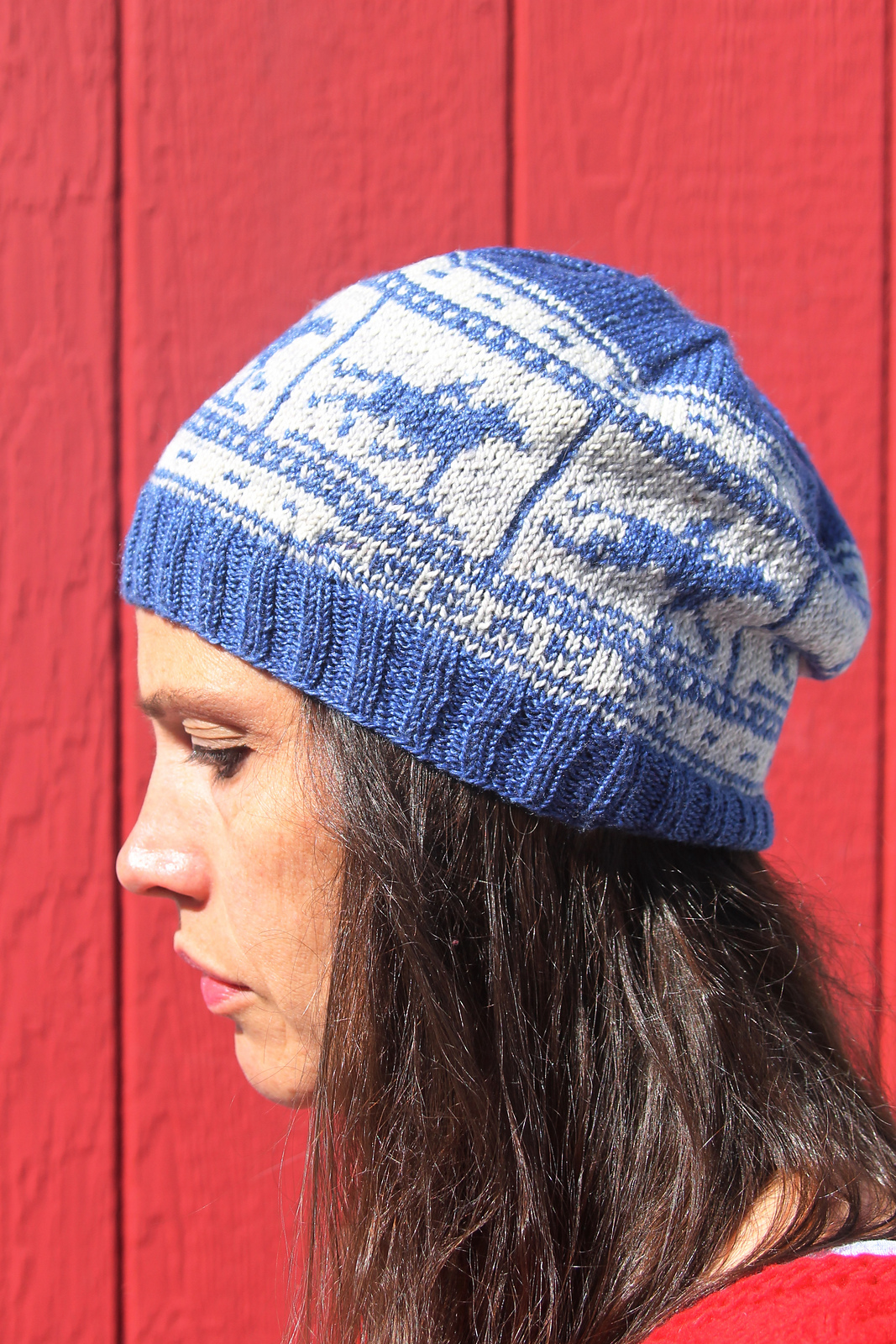 Zoetrope, knit by Stacy (shutterhoney)